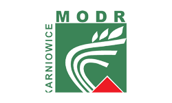 client-mord